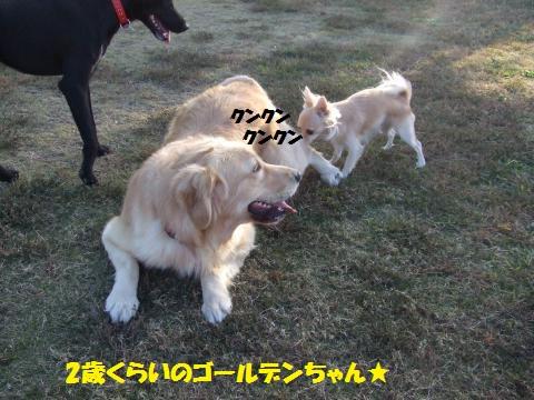 034_convert_20121113002056.jpg