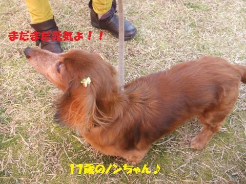 035_convert_20140203013253.jpg