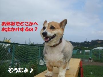 036_convert_20120812033836.jpg