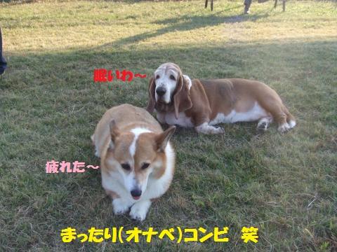 039_convert_20121025233606.jpg