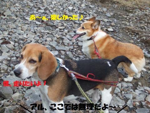 039_convert_20121126040611.jpg
