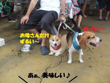 042_convert_20120822034047.jpg