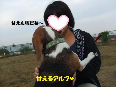046_convert_20121101234016.jpg