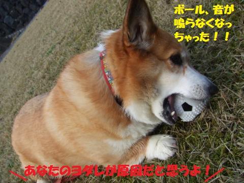 046_convert_20121126040502.jpg