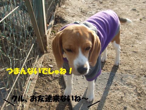 048_convert_20140126234800.jpg