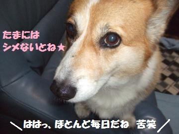 053_convert_20120830224713.jpg
