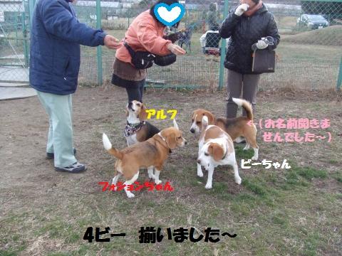 053_convert_20130111011838.jpg