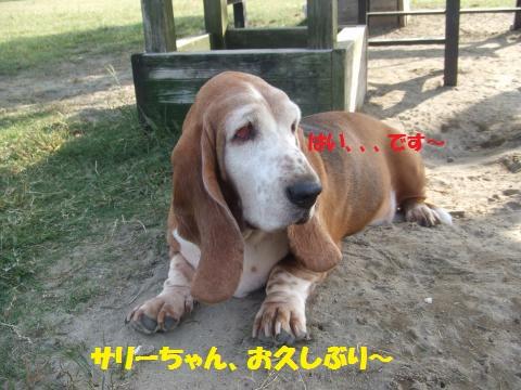 055_convert_20121014224317.jpg