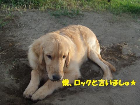 057_convert_20120924010626.jpg