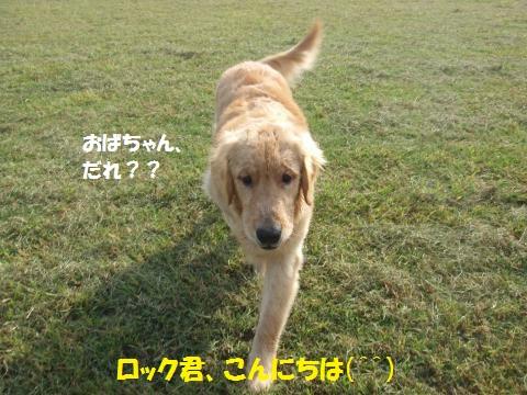059_convert_20121014224853.jpg
