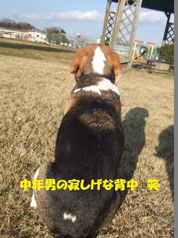 061_convert_20140126235328.jpg