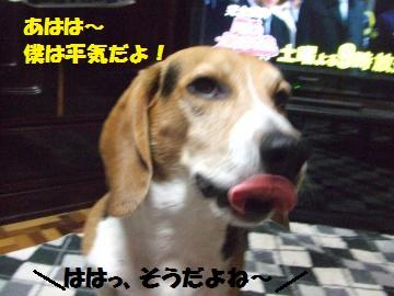 062_convert_20120830223651.jpg