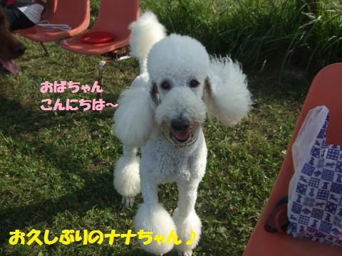 065_convert_20121014225138.jpg