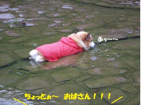 066_convert_20121030014859.jpg
