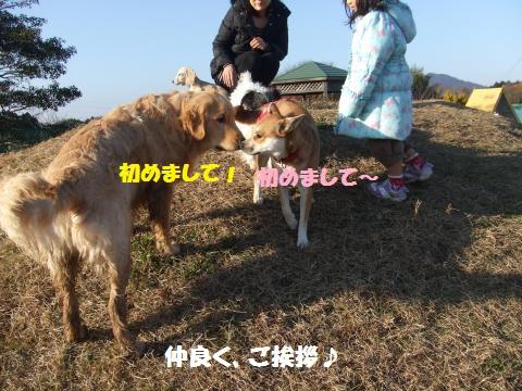 073_convert_20121217000057.jpg