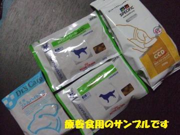 074_convert_20120814022900.jpg