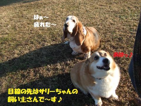 077_convert_20121216235308.jpg