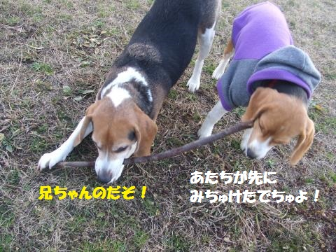 077_convert_20140126235219.jpg