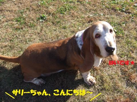 079_convert_20121203000559.jpg