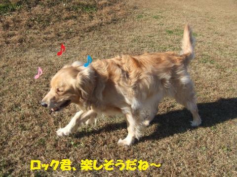082_convert_20121203001050.jpg