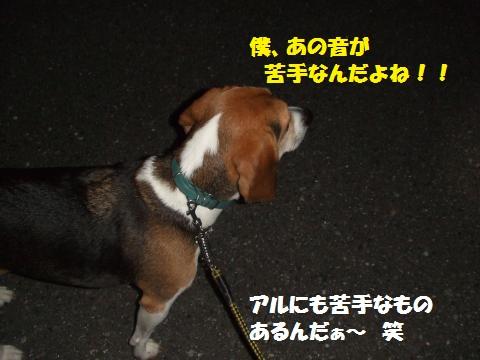 083_convert_20120925233202.jpg