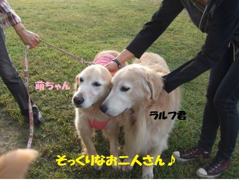 085_convert_20121014223521.jpg
