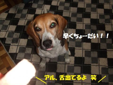 100_convert_20120925231915.jpg