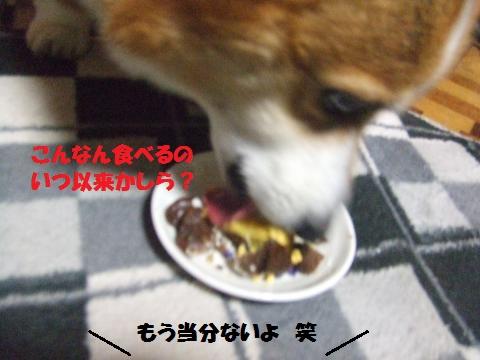 117_convert_20121104232345.jpg