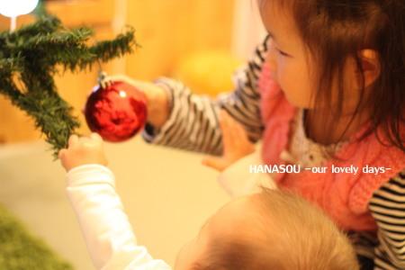 IMG_2848_20121126151515.jpg