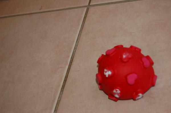007_convert_20121121132448.jpg