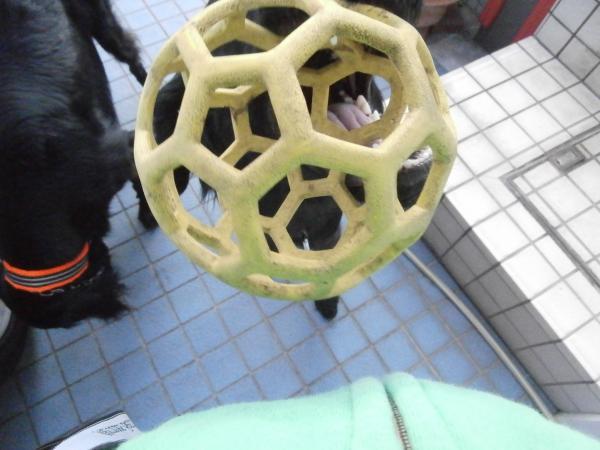 023_convert_20121024163049.jpg