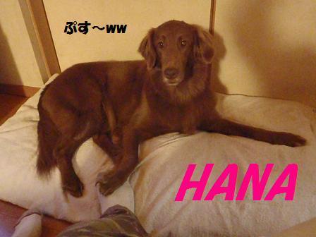 HANANA17APR12 009