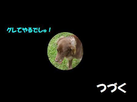 コピー ~ 29JUN12 072