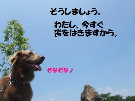 04JULY12 086hanadoushi
