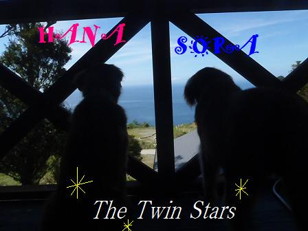 0911SEP12 IZU 185twinstars