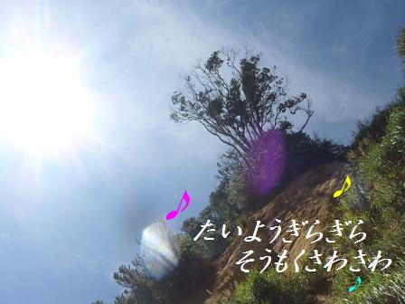 C0911SEP12 IZU 290song