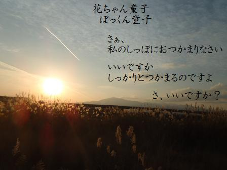 コピー ~ COMET20NOV12 028ts