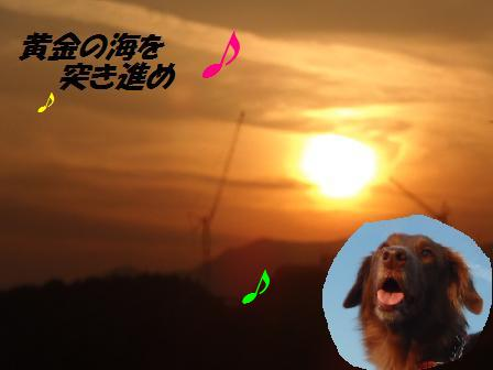 コピー ~ B20NOV12 075sunsetcomet2