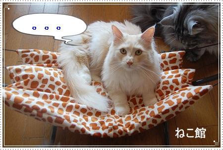 blog12_20130405145452.jpg