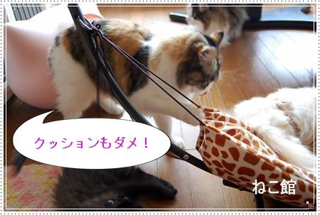 blog16_20130405145457.jpg