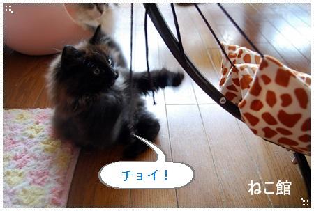 blog25.jpg