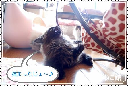 blog26.jpg