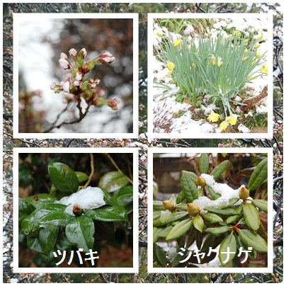 blog_20130422071604.jpg
