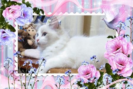 blog_20130422132639.jpg