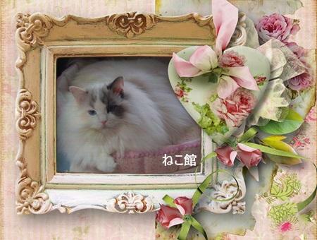 blog_20140131094631412.jpg