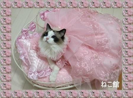 blog_20140207140947d9a.jpg