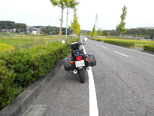DSCN7187.jpg