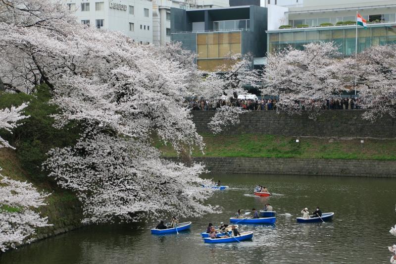 chidorigafuchi_0017f.jpg