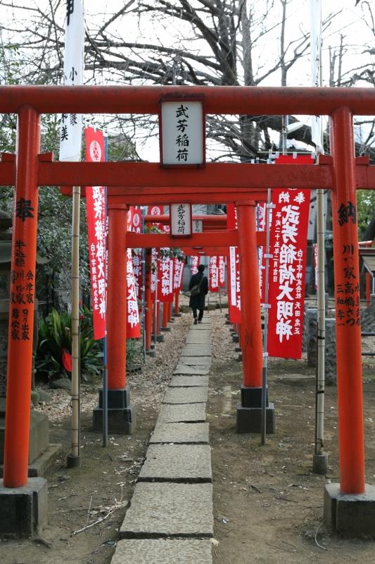 ikemeji_0062f.jpg