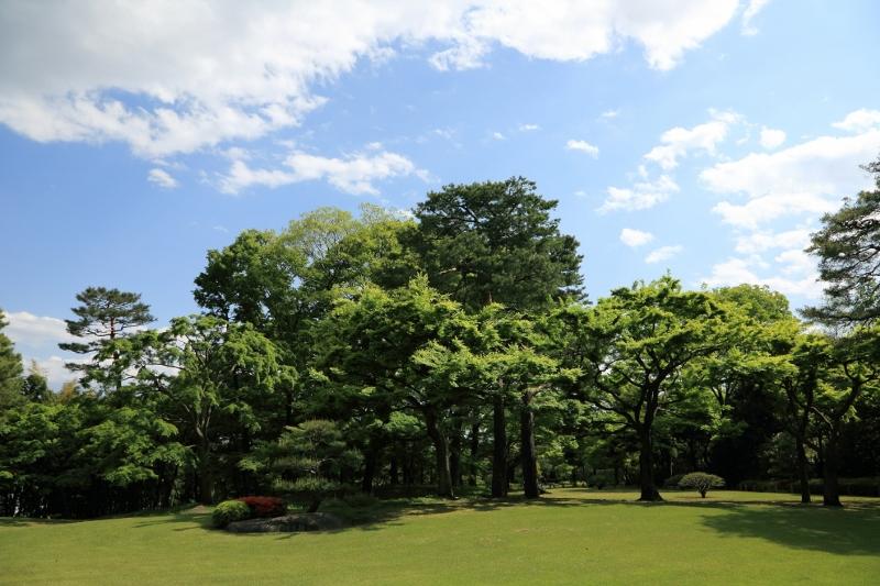 kokubunji_0018f.jpg